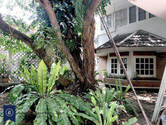 nice-plot-of-land-for-sale-in-ekkamai-1-1024x768
